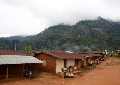 The mist comes down from what little rain forest remains - Baunchi, Cross River